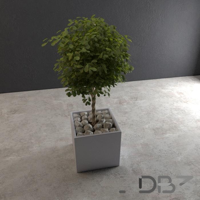 3D Outdoor Pot Tree