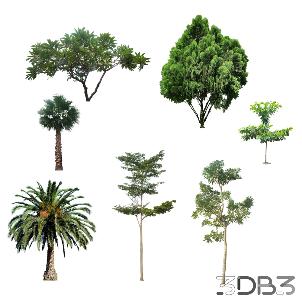 3D Cut Out Trees - 3db3 com - Free 3D Model Download