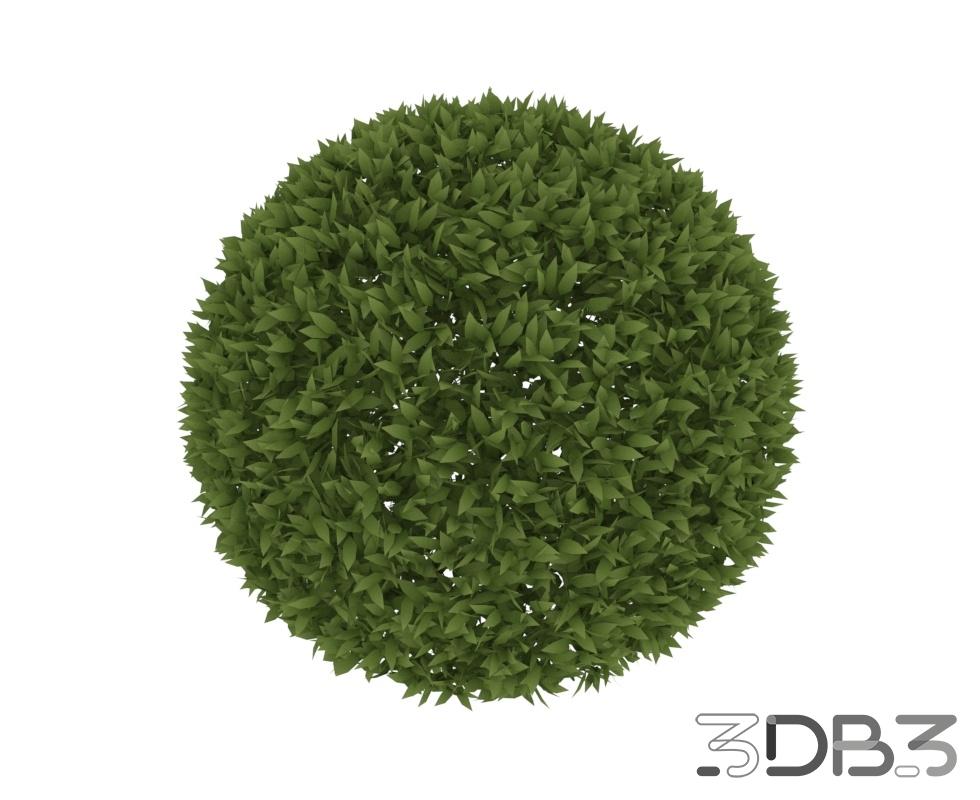 3D Rounded Bush Model
