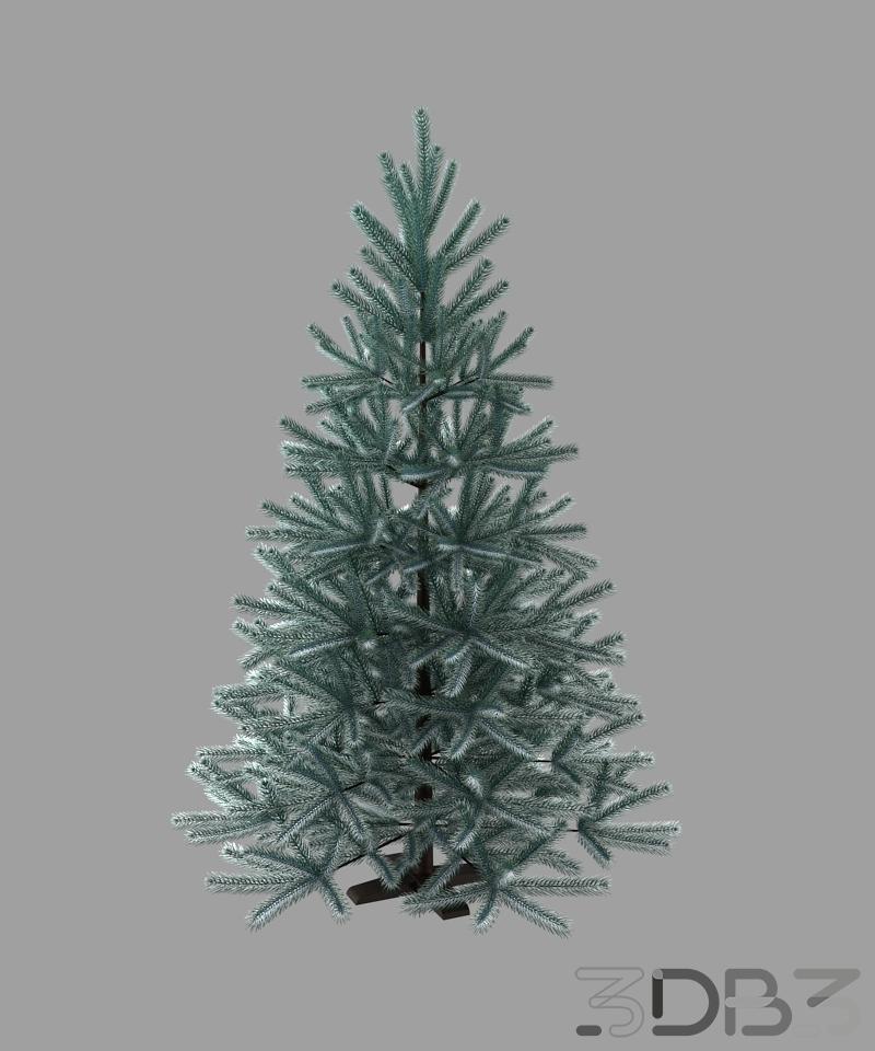 Christmas treebare